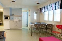 Koivula, olohuone ja keittonurkkaus - Koivula, common room and kitchenette
